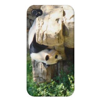Hot Panda iPhone 4/4S Covers