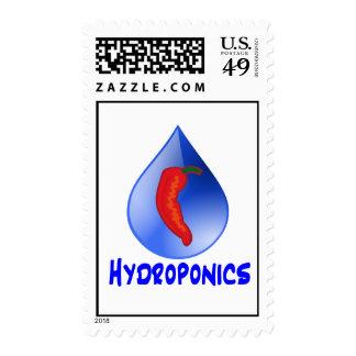 Hot Pepper Blue Drop Blue Text Hydroponics Stamp