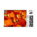 Hot Pepper stamps