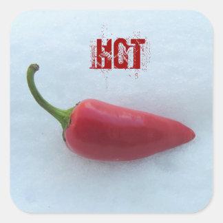 Hot pepper square stickers