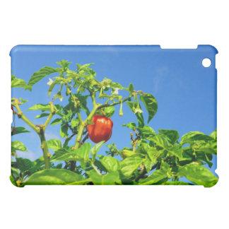 hot peppers on plant sky back 2 iPad mini covers