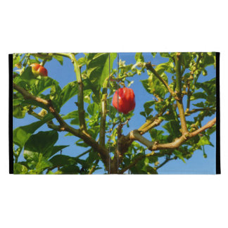 hot peppers on plant sky back iPad case