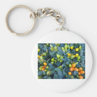 Hot Peppers Plant Keychain