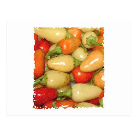 Hot Peppers red yellow and orange Postcard