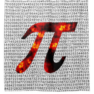 Hot Pi Shower Curtain