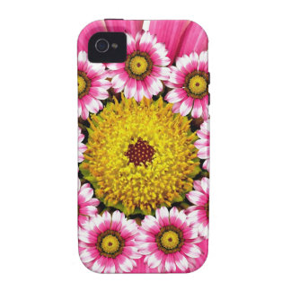 Hot Pink and Yellow Daisy Flowers iPhone 4/4S Covers