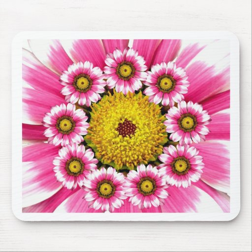 Hot Pink and Yellow Daisy Flowers Mouse Pad