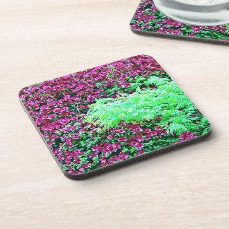 Hot Pink Azaleas and Japanese Maple Monet's Garden Drink Coaster