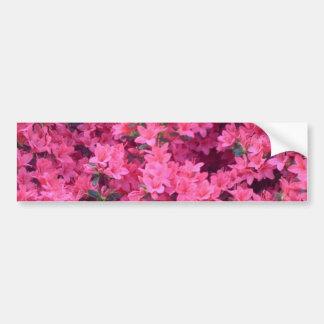 Hot Pink Azaleas Bumper Sticker