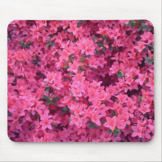 Hot Pink Azaleas Mouse Pad