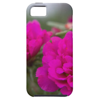 Hot pink begonia flowers iPhone SE/5/5s case