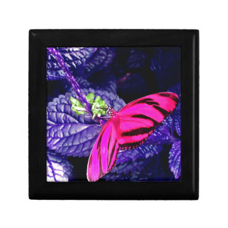 Hot Pink Butterfly on Bright Purple Plant Jewelry Box