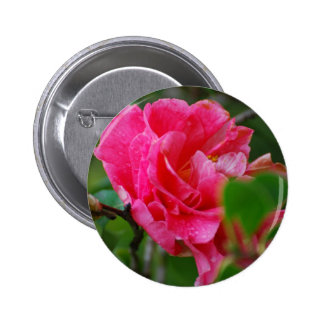 Hot Pink Camelia Flower Buttons
