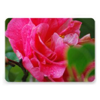 Hot Pink Camelia Flower Custom Announcements
