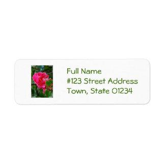 Hot Pink Camelia Flower Custom Return Address Labels