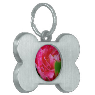 Hot Pink Camelia Flower Pet Tags