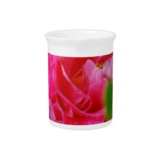 Hot Pink Camelia Flower Pitchers