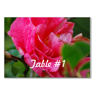 Hot Pink Camelia Flower Table Cards