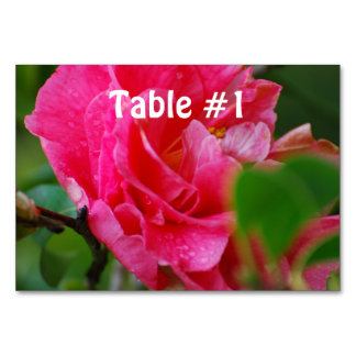 Hot Pink Camelia Flower Table Card