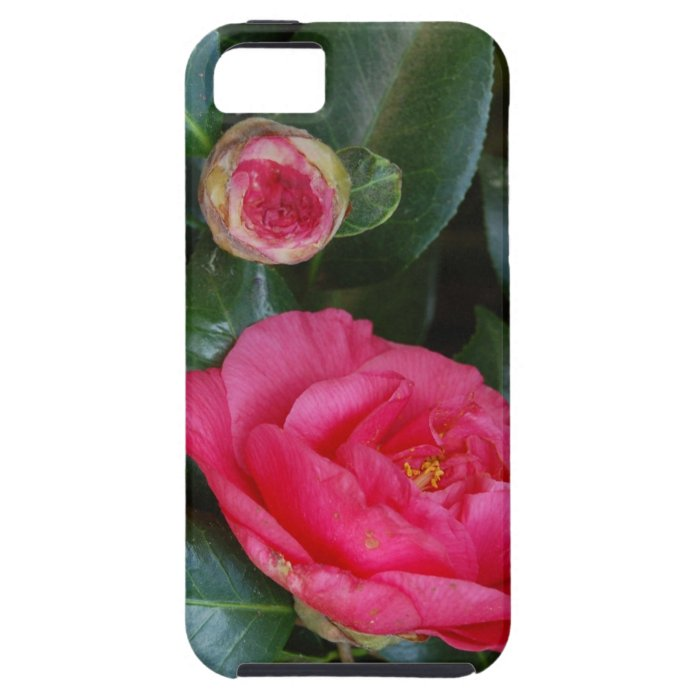 Hot Pink Camelias iPhone SE/5/5s Case
