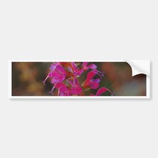 Hot Pink Car Bumper Sticker