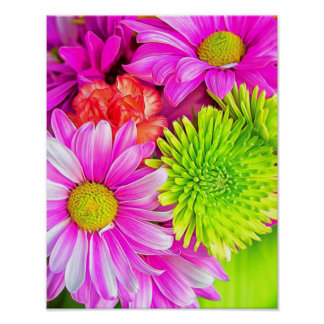 Hot Pink Daises And Green Spider Mum Poster