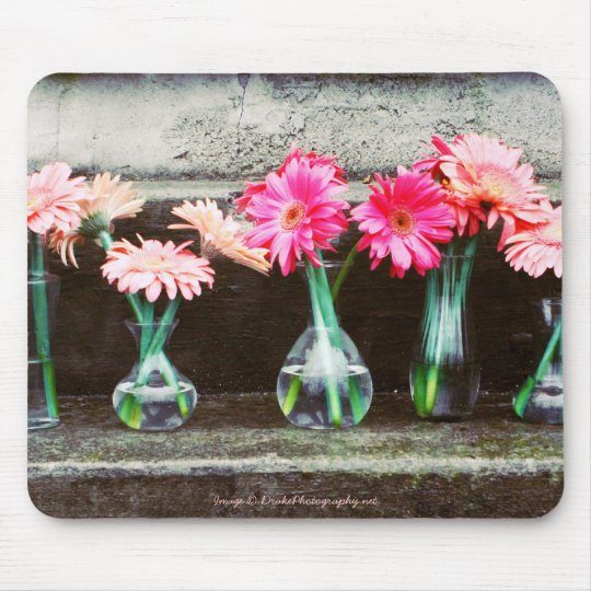 Hot Pink Daisies in Vases Mouse Pad