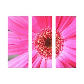 Hot Pink Daisy Canvas Print