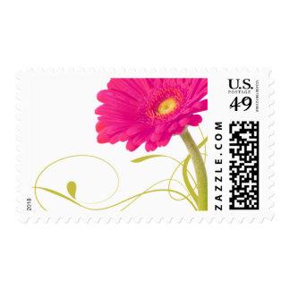 Hot Pink Daisy Gerbera Stamp