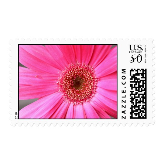 Hot Pink Daisy Postage