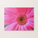 Hot Pink Daisy Puzzle