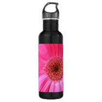 Hot Pink Daisy Stainless Steel Water Bottle