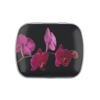 Hot Pink Dendrobium Orchid Flower - Floral Orchids Jelly Belly Tins