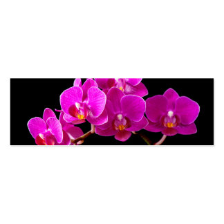 Hot Pink Dendrobium Orchid Flower Orchids Template Business Card
