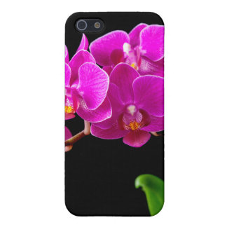 Hot Pink Dendrobium Orchid Flower Orchids Template Cover For iPhone SE/5/5s
