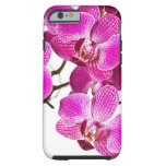Hot Pink Dendrobium Orchid - Orchids Background Tough iPhone 6 Case