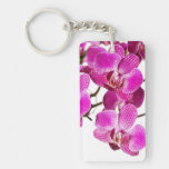 Hot Pink Dendrobium Orchid - Orchids Background Rectangular Acrylic Key Chains