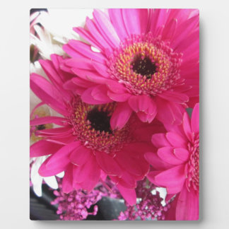 Hot Pink Flowers Plaque