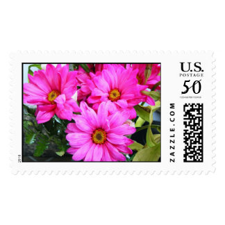Hot Pink Flowers Postage