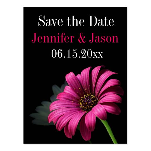 Hot Pink Fuchsia Gerber Daisy Save the Date Cards Postcard