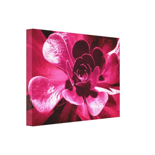Hot Pink Funky Floral Canvas Prints