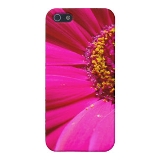 hot pink gerber daisy case for iPhone 5