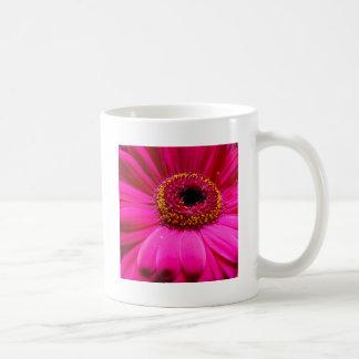 hot pink gerber daisy coffee mugs