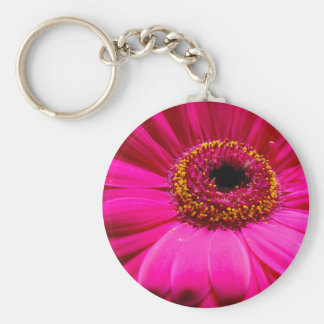 hot pink gerber daisy key chain
