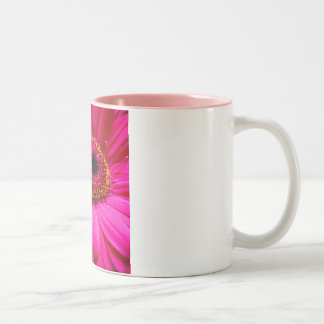 hot pink gerber daisy mug