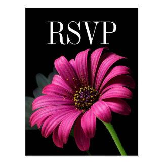 Hot Pink Gerber Daisy Wedding RSVP Postcard