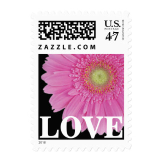 Hot Pink Gerbera Daisy Love Postage Stamps