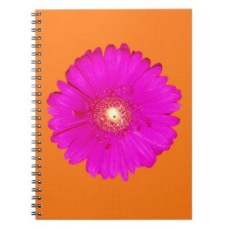 Hot Pink Gerbera Daisy Note Books