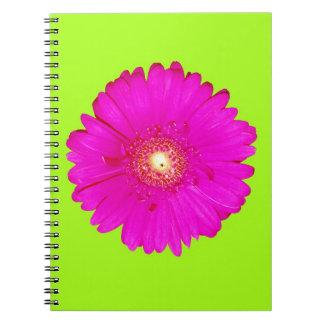 Hot Pink Gerbera Daisy Notebooks