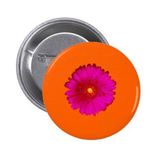 Hot Pink Gerbera Daisy on Bright Orange Pinback Buttons